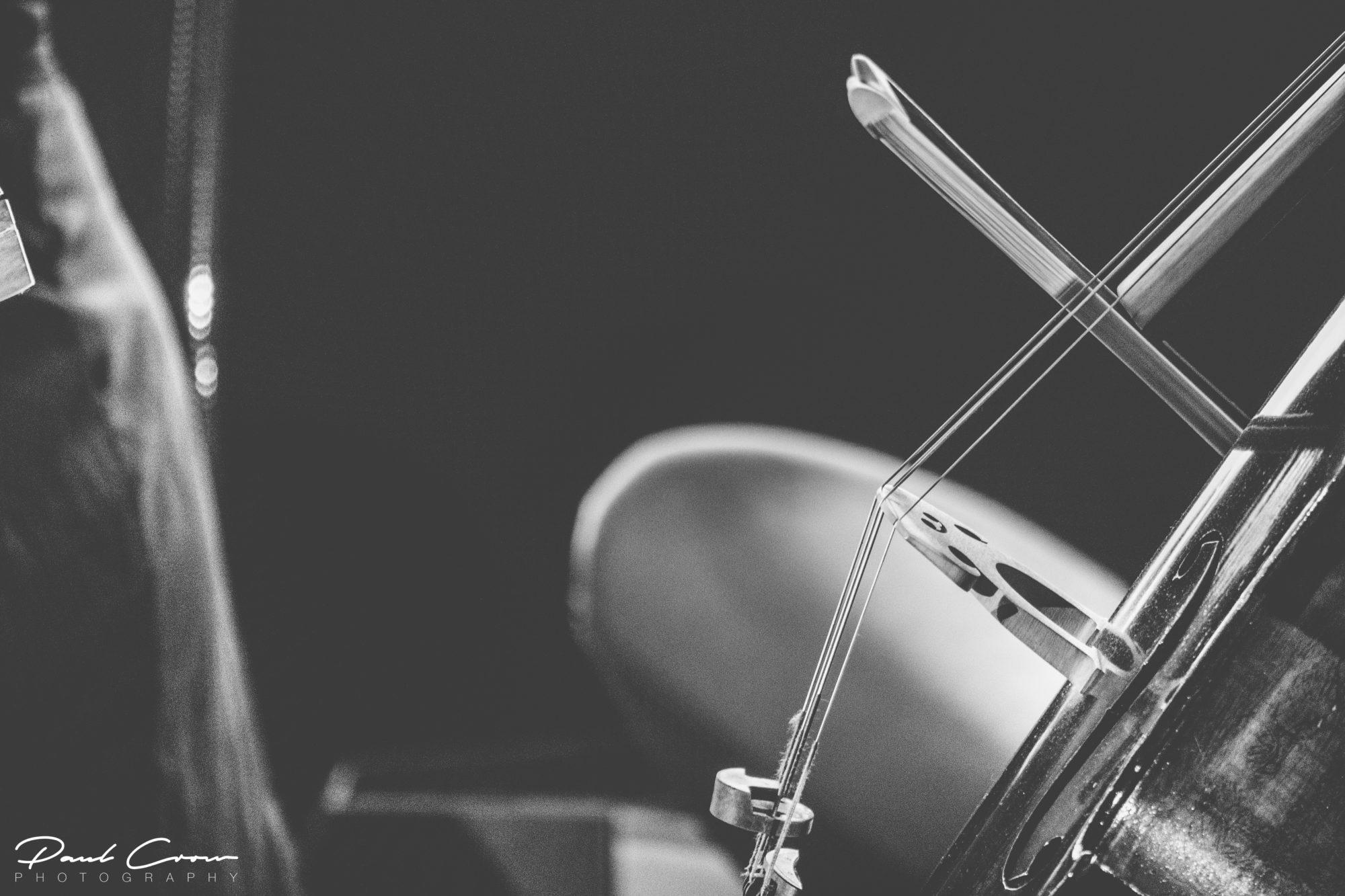 Talented Cellist details