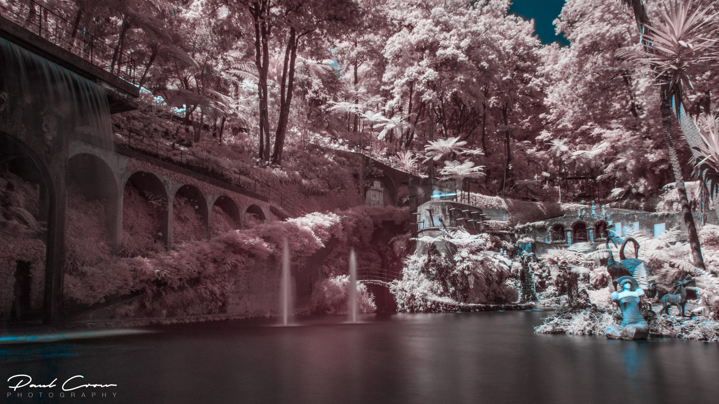 Native IR Monte Palace Tropical Garden in Funchal