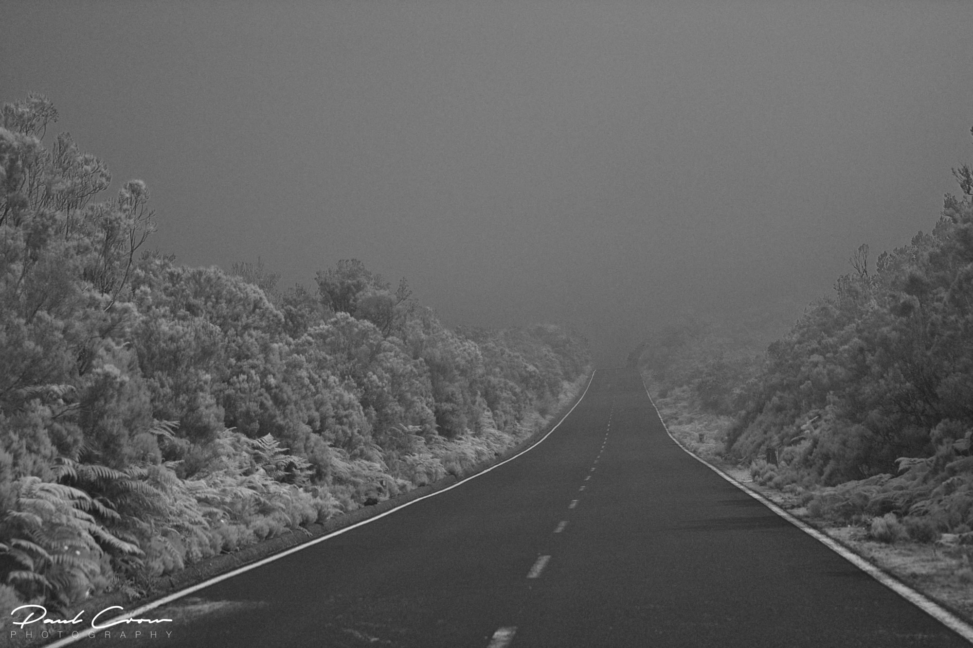 Infrared Madeira road